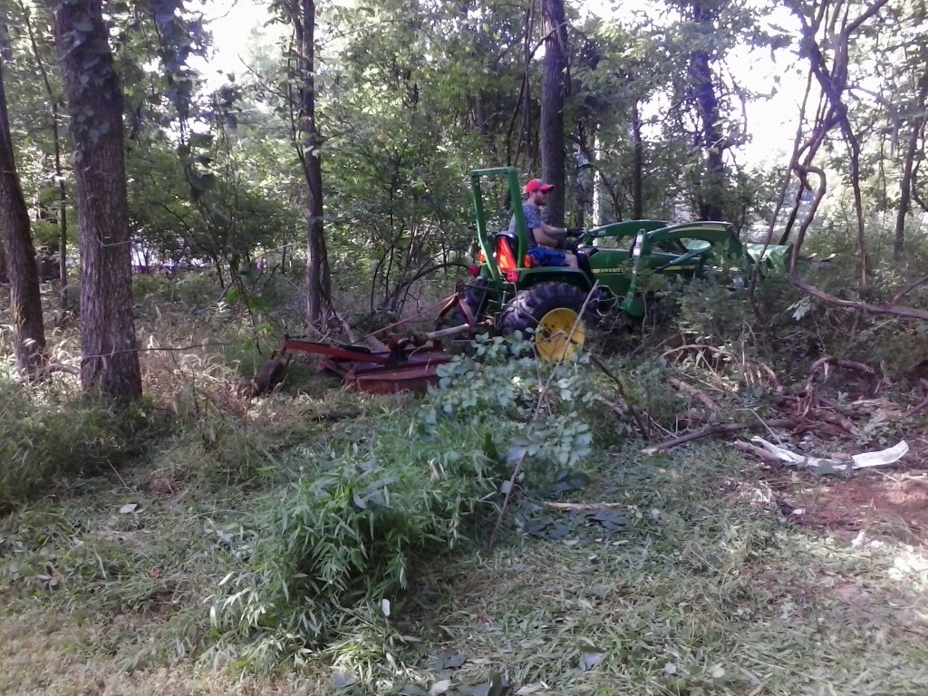 Clearing land for new wood pile / processing site.